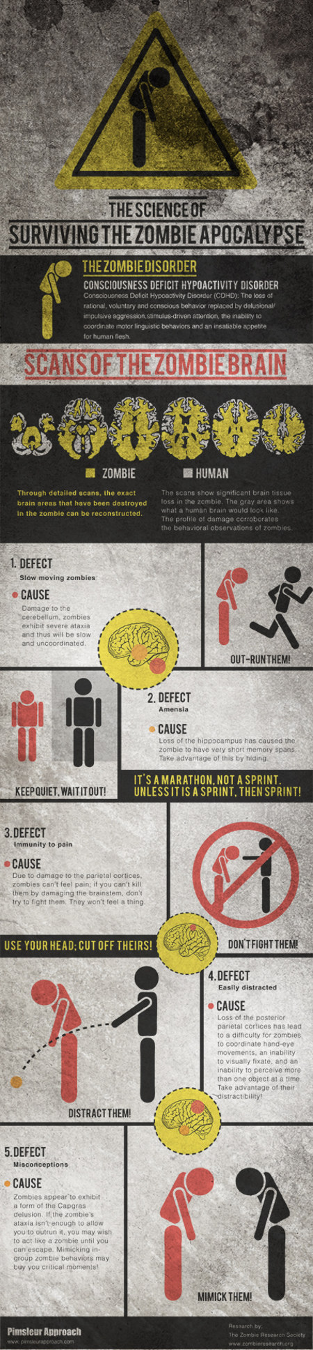zombie brains The Science Of Surviving The Zombie Apocalypse Infographic